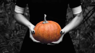 Halloween @ Periplaneta