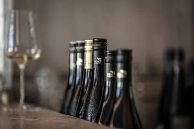 Regionales Weinkomitee Weinviertel - Sam Palandech