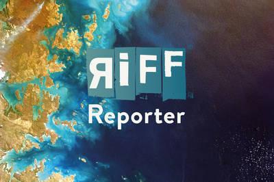 RiffReporter@ZLB - Sie fragen - Journalist*innen antworten