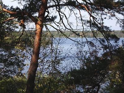 Herbst-Wanderung von Wannnsee nach Charlottenburg