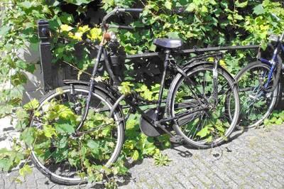 Fahrradflohmarkt bei den Inselspinnen
