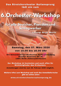 6. Orchester-Workshop Streichorchester Saitensprung