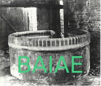Lesung: Tobias Roth - Giovanni Pontano's BAIAE