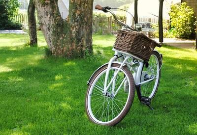 Tour: Grüne Oasen entdecken. Fahrrad-Erkundungstour im Falke...