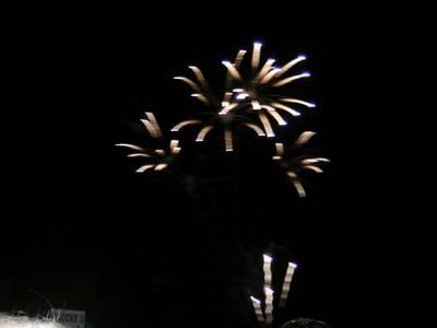 Feuerwerk im Britzer Garten