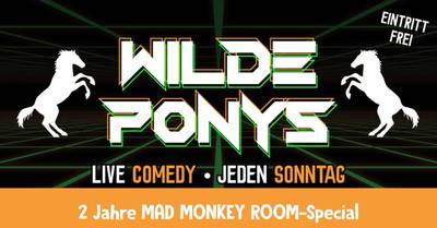 STAND-UP COMEDY • in P-Berg • 20.30 - 22.00 Uhr // WILDE PON...