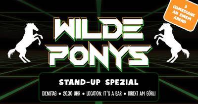 STAND-UP COMEDY • direkt am Görli • 20.30 - 22.00 Uhr // WIL...
