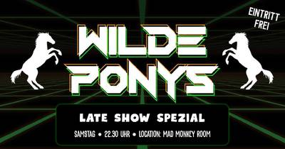 STAND-UP COMEDY • in P-Berg • 22.45 Uhr Late Show // WILDE P...