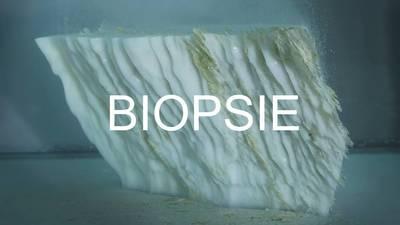 BIOPSIE. Gruppenausstellung zum Thema Klimawandel und Umwelt...