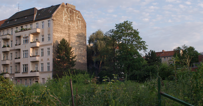 DokuMontag: Natura Urbana. The Brachen of Berlin