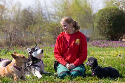 Dozentin mit Hunde auf Wiese