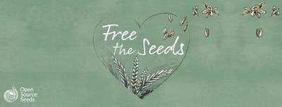 Ein Brot für freies Saatgut- Podiumdiskussion und Brotverkos...