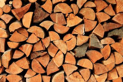Workshop: Bock auf Holz - der Bastelworkshop