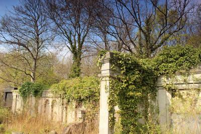 Spaziergang durch den Urwald im Jüdischen Friedhof Weißensee