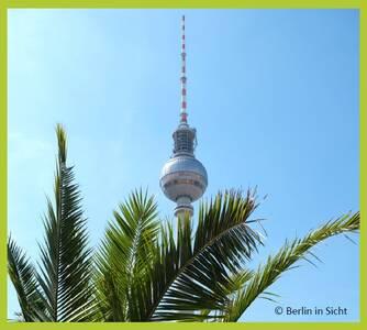 Berliner Fernsehturm mit Palme