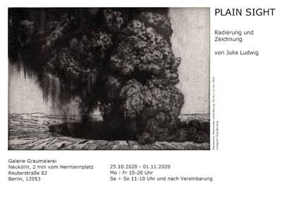 Plain Sight - Radierungen und Zeichnungen von Julia Ludwig